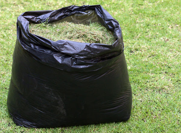 Black bag with garden waste