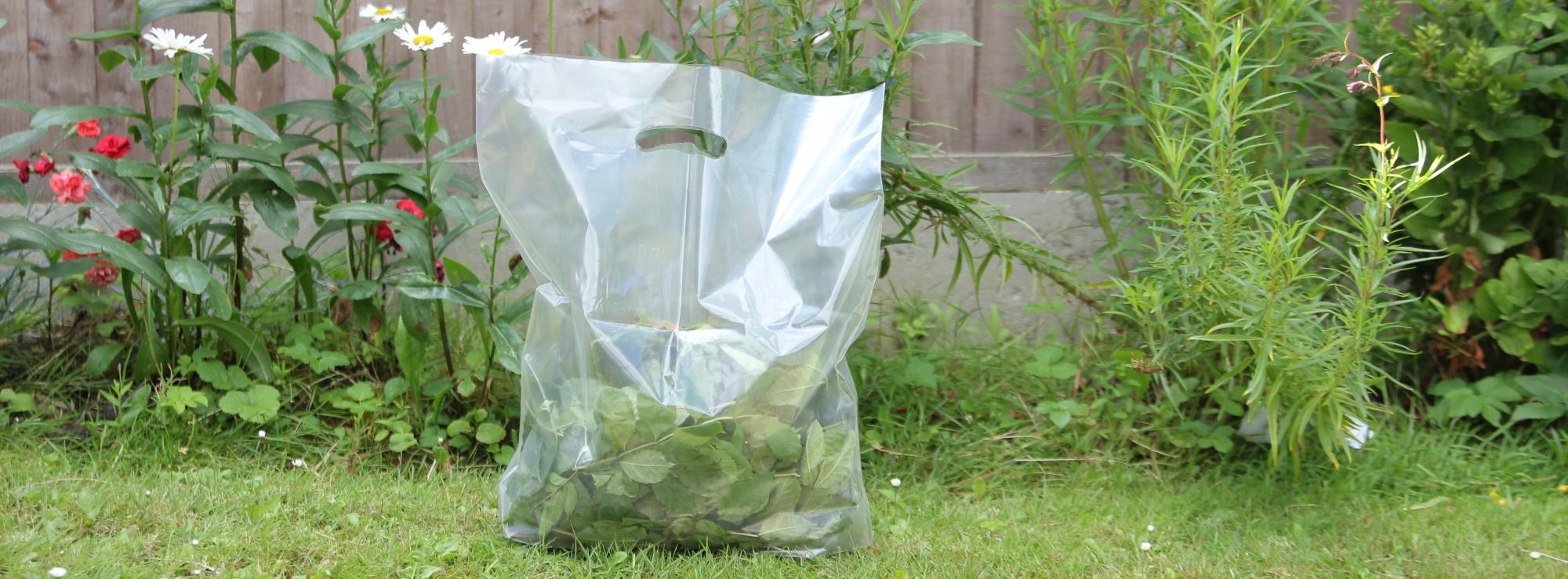 Biodegradable packaging from Polybags